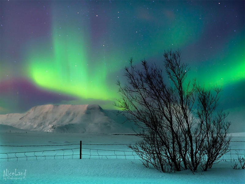 Reykjavik and Northern Lights